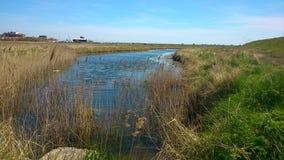 Aldeburgh沼泽 免版税图库摄影