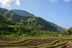 Aldeia da montanha, Amed, Bali Indonésia fotos de stock royalty free