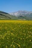 Aldeia da montanha italiana Castelluccio Foto de Stock Royalty Free
