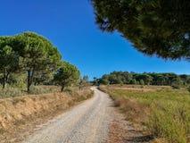 Aldeia font la route de champ de Meco Photos stock