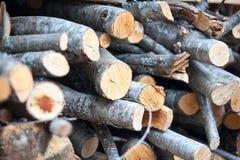 Alder firewood stacked Stock Images