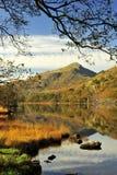 Alder framed, Moel Hebog from Llyn Gynant shore. Taken from the boggy shoreside of Llyn Gynant, and framed by Alder branches, the mountainous Moel Hebog peak stock images