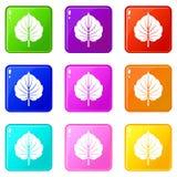 Alder leaf icons 9 set. Alder leaf icons of 9 color set isolated vector illustration stock illustration