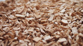 Alder sawdust. For backgrounds and textures Royalty Free Stock Photos