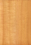 Alder (wood texture) Royalty Free Stock Photos