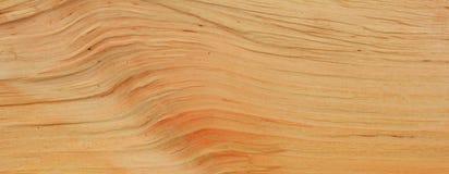 Alder wood texture Stock Image