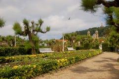 alderdieder arbeta i trädgården San Sebastian arkivbild