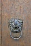 Aldrava de porta do leão na porta de madeira velha Imagens de Stock