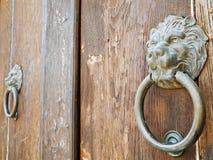 Aldrava de porta principal do leão. Fotos de Stock
