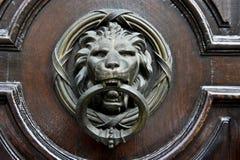 Aldrava do leão Foto de Stock