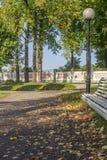 Alee в парке осени Стоковые Изображения RF