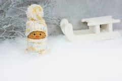 Alegat dla zima sportów Fotografia Stock