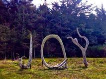alegría Foto de archivo libre de regalías