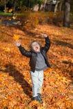 Alegría de la estación del otoño Imagenes de archivo