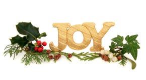 Alegría de la Navidad Fotografía de archivo libre de regalías