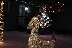 Alegría de la Navidad Foto de archivo