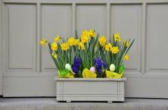 Alegría de Pascua Imágenes de archivo libres de regalías