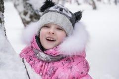 Alegría del invierno Foto de archivo