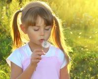 Alegría del verano Imagen de archivo libre de regalías