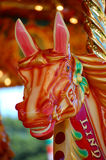 Alegre vai o cavalo do círculo Foto de Stock