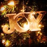 alegria Fotografia de Stock Royalty Free