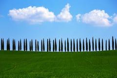 alei cyprysu krajobraz Tuscany Obrazy Royalty Free