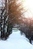 Alei drogi przemian parka zima Zdjęcie Stock