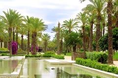 alei fontanny palma zdjęcie royalty free