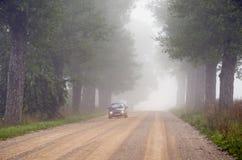 alei mgły żwiru maszyna zanurzający drzewo zdjęcie stock