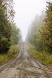 alei mgły ranek Obrazy Royalty Free