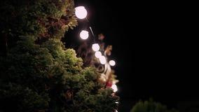 alei para zaświeca noc odprowadzenie Fotografia w stylu rocznika stylu zbiory