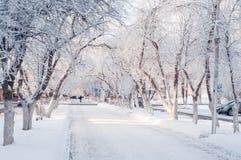 Aleia bonita em um dia ensolarado, árvores da cidade do inverno na neve foto de stock royalty free