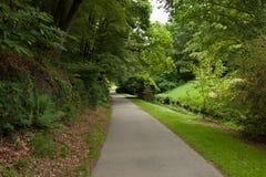 Aleia bonita no parque Projeto ajardinando do jardim Imagens de Stock