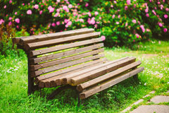 Aleia bonita no parque Projeto ajardinando do jardim Fotografia de Stock Royalty Free