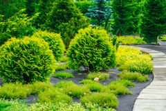 Aleia bonita no parque Projeto ajardinando do jardim Imagem de Stock