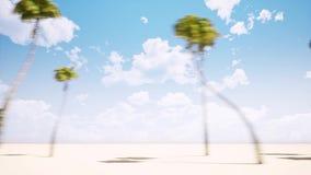 Aleia das palmeiras ilustração royalty free