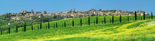 Aleia de Cypress em Montalcino Imagem de Stock