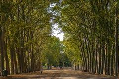 Aleia de Girona no parque imagens de stock