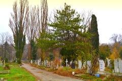 Aleia do cemitério Imagem de Stock