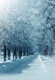 Aleia do inverno imagens de stock royalty free