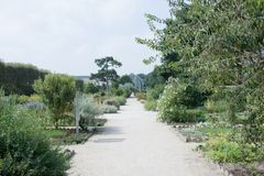 Aleia do jardim da planta em França fotos de stock