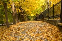Aleia do outono com cerca lateral Fotografia de Stock Royalty Free