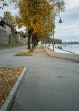 aleia do outono na margem na névoa fotos de stock royalty free
