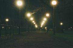 Aleia do parque da noite iluminada por postes de luz Fotos de Stock Royalty Free