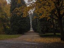 Aleia do parque em cores do outono fotos de stock