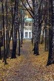 Aleia do vidoeiro e casa velha no outono Imagens de Stock