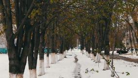 A aleia em que se encontra a neve, um fenômeno raro da neve na primavera na folha verde vídeos de arquivo