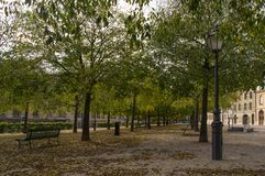 A aleia entre árvores no parque Imagem de Stock Royalty Free