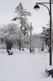 Aleia no parque do inverno imagens de stock