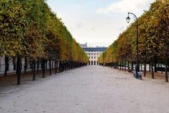 Aleia real do palácio em Paris, França Foto de Stock Royalty Free